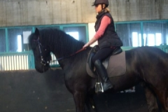 equitation_377