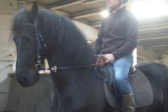 equitation_384