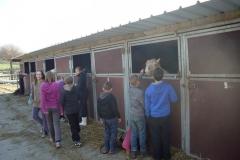 equitation_391