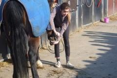 equitation_402