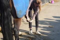 equitation_403
