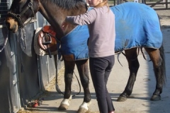 equitation_406