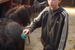 equitation_411