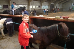 equitation_417