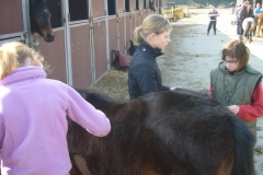 equitation_424
