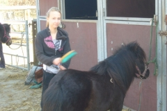 equitation_462