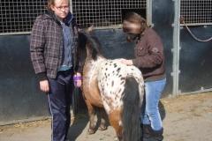 equitation_469