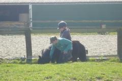 equitation_473