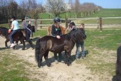 equitation_480