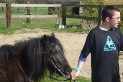 equitation_484
