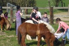 equitation_486