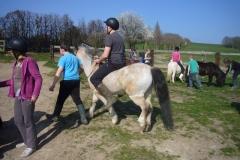 equitation_491