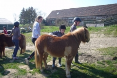 equitation_493