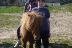 equitation_501