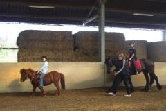 equitation_534