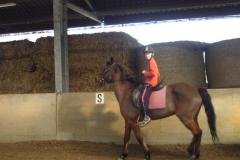 equitation_539