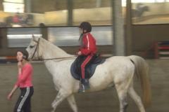 equitation_542