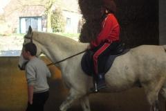 equitation_553