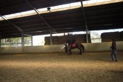 equitation_557