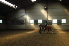 equitation_562