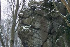 classe-verte-roisin-2009-311