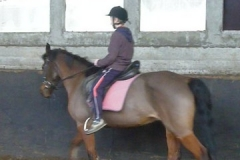 equitation_374