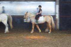 equitation_380