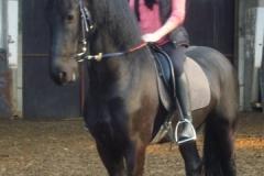 equitation_381