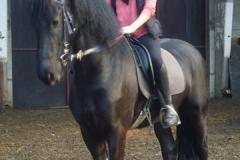 equitation_382
