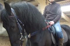 equitation_385